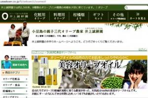 2-5-Inoue site-33