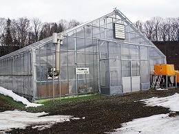36.s-DSC01131-trimmed-greenhouse2