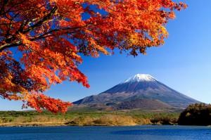 ④精進湖からの子抱き富士